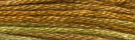 DMC Floss Color Variations Peanut Brittle