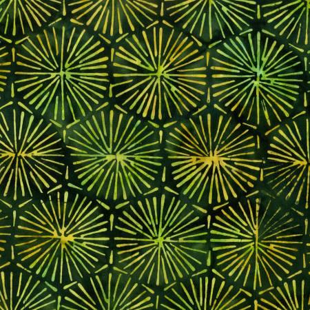 jungle starburst