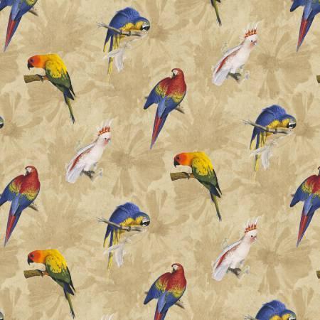 Tan Parrots