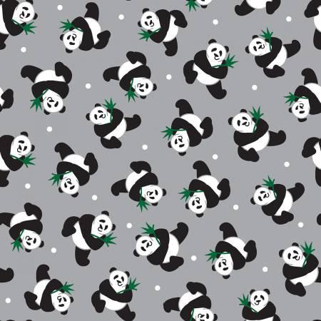 Grey Pandas Tossed - Little Explorers