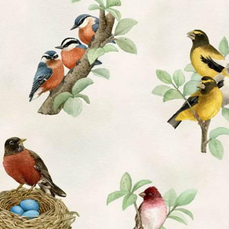Cream Bird Nest