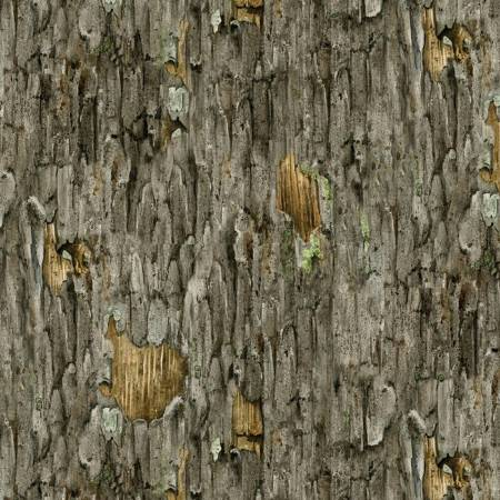 Grey Tree Bark