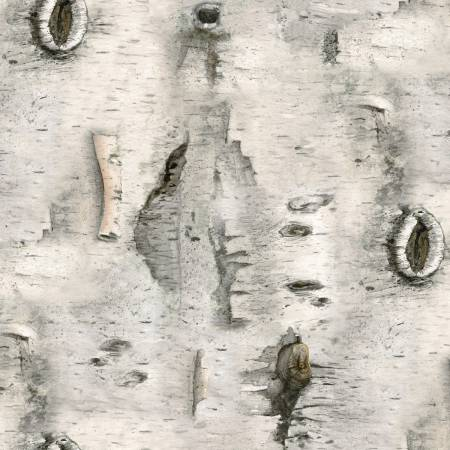 Grey Birch Wood