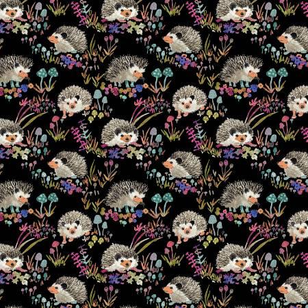 Black Hedgehogs