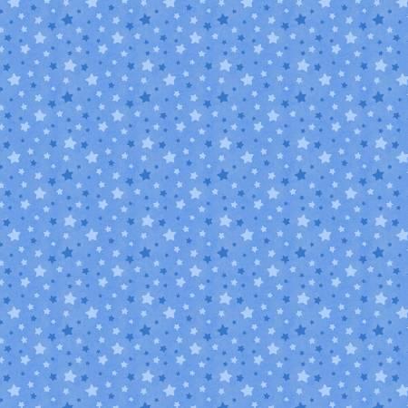 Snow What Fun Blue Stars