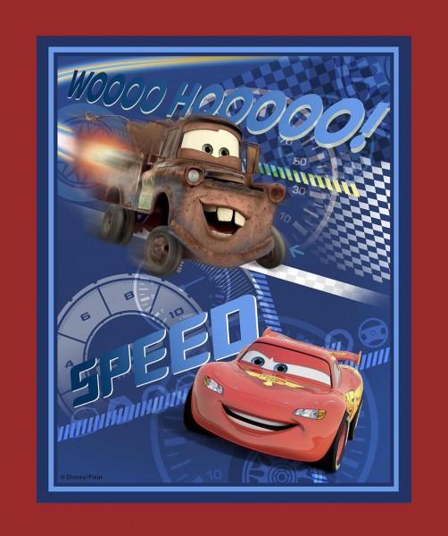 Cars - Speed Racing Panel