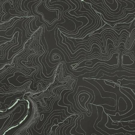 50034 4 Charcoal Topography by Whistler Studio for Windham Fabrics.100% cotton 43 wide