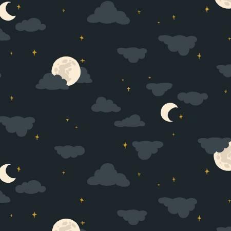 Night Moonlight