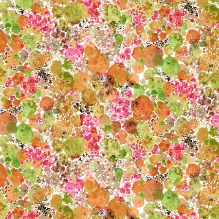Coral Moss- Curio