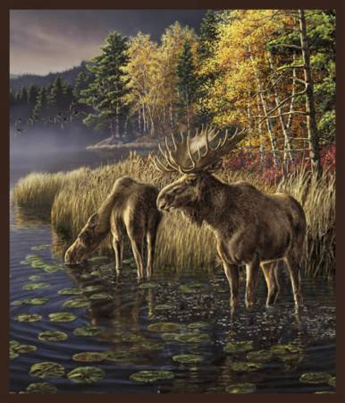 One of a Kind 50903P-X<br>Moose Lake