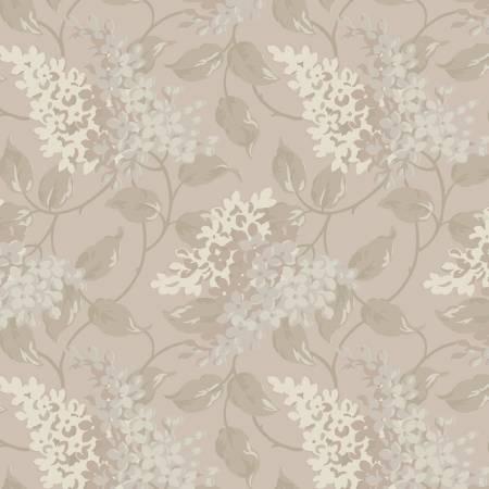 Hydrangea Almond