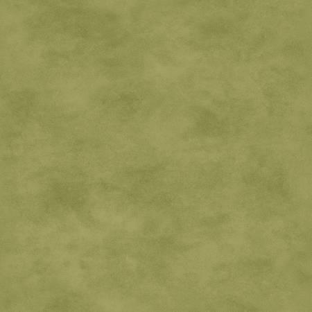Shadow Play Light Green Tonal 513MGG