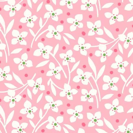 Carnation Wildflower