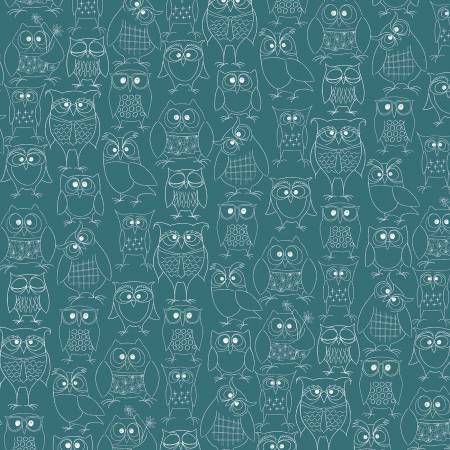 WHOOS HOO Teal Owl Party 51595-3
