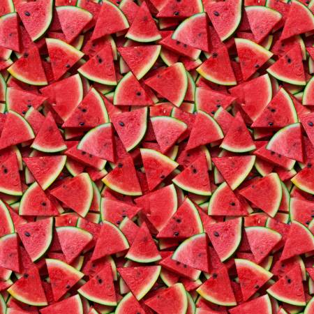 A La Carte - Slice of Life Watermelon Digitally Printed