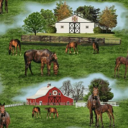 Multi Horse Farm