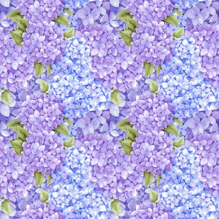 Lilac Packed Hydrangea