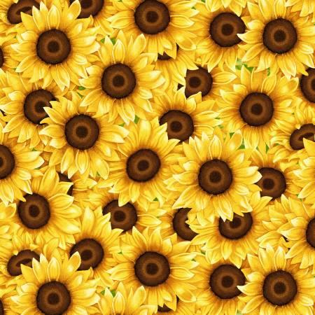 Sunny Sunflowers Yellow Packed Sunflowers