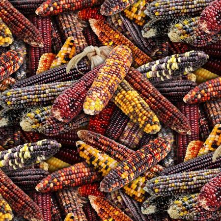 Elizabeth's Studio - Food Festival-Native Corn/Multi - 595Multi