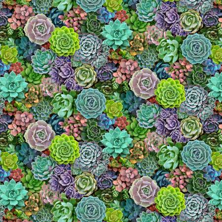 SPECIALTY FABRICS:  Small Packed Succulents: Succulent Charm - Landscape Medley by Elizabeth's Studio