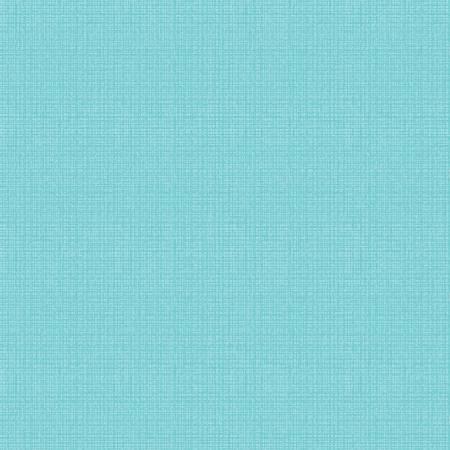 Aqua Color Weave 51