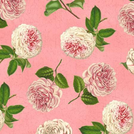 Medium Pink Roses & Peony Toss