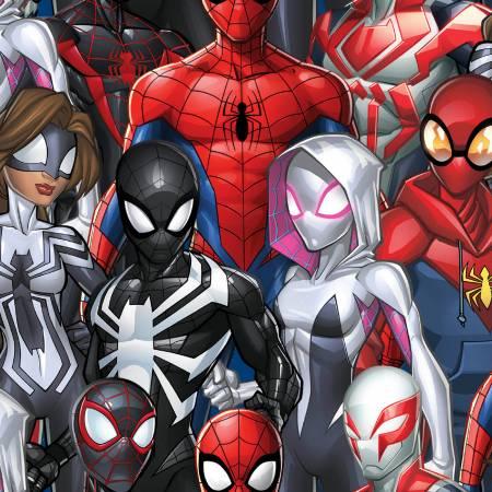 Marvel Spiderman & Friends