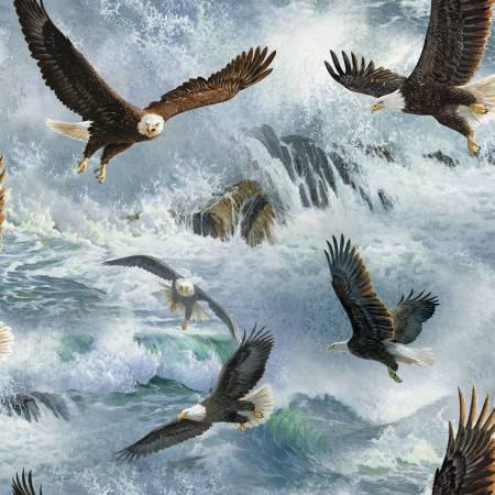 Wild Wings Eagle Flight