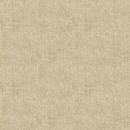Burlap Texture- Linen
