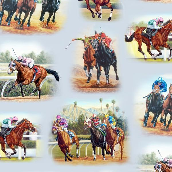 Blue Horse Race Track Scenic