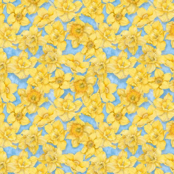 WILMINGTON PRINTS WALKING ON SUNSHINE DAFFODILS/BLUE BACK 79268 455