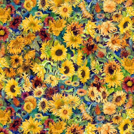Multi Small Packed Sunflowers