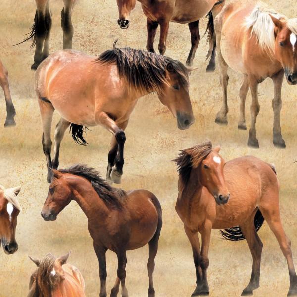 Tan Horses Allover