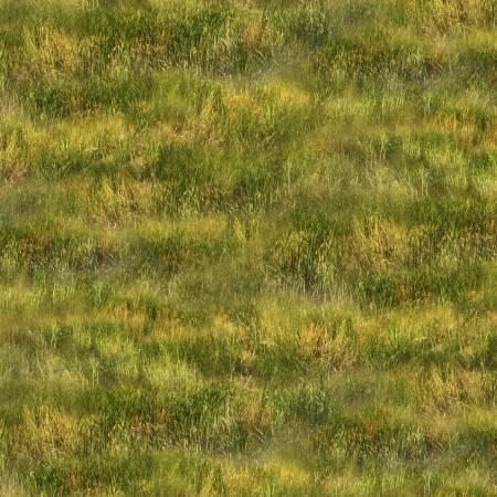 Green Grass - Greener Pastures by Jennifer Pugh