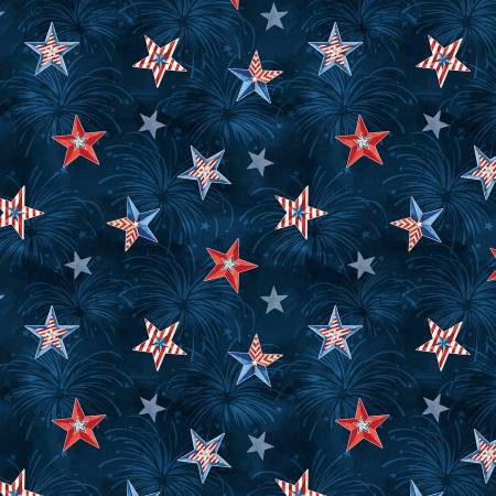 Liberty Lane Navy/Multi Stars