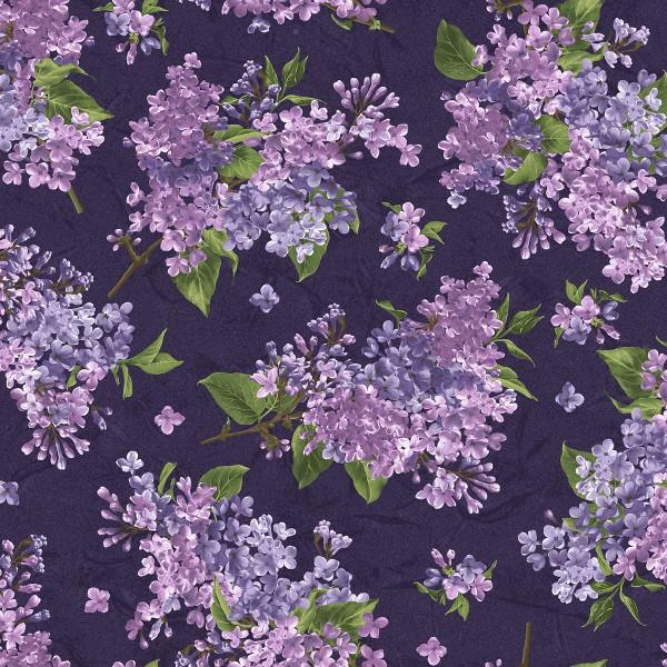 Dark Purple Blooming Lilac