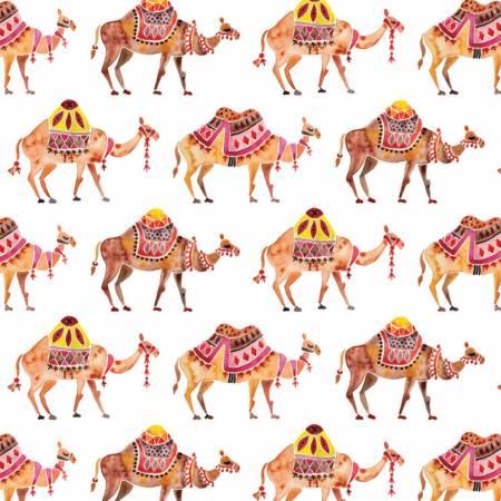 Moroccan Nights Camel Caravan
