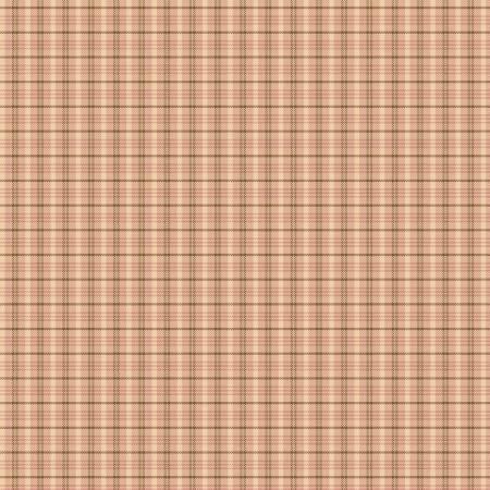 Tickled Pink Yarn Dye Small Plaid