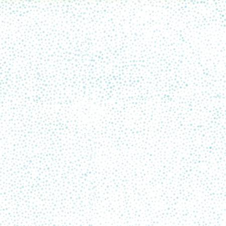 885-536 Aquarius