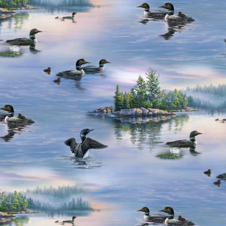 8910 Blue Loons Scenic
