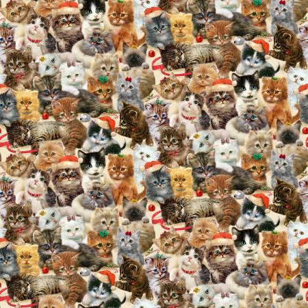 Cream Packed Kittens Allover