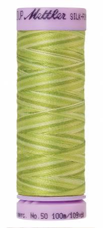 9075-9817 Silk-Finish 50wt Variegated Cotton Thread 109yd/100M Little Spouts