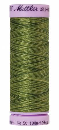 Silk-Finish 50wt Variegated Cotton Thread 109yd/100M Ferns