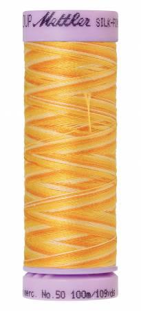 Silk-Finish 50wt Variegated Cotton Thread 109yd/100M Horizon