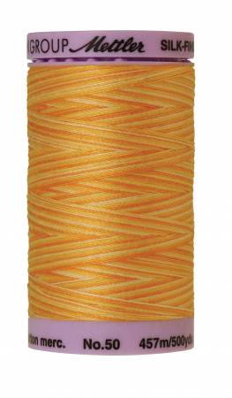 Silk-Finish 50wt Variegated Cotton Thread 500yd/457M Horizon