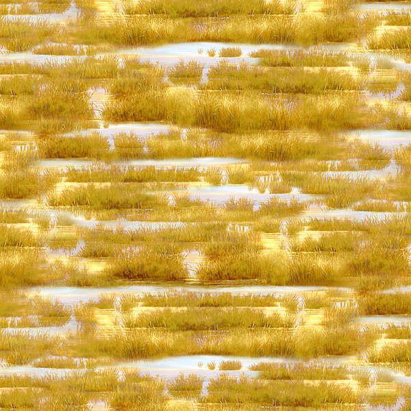 Golden Brown Grass & Water Texture