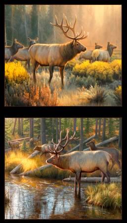 Morning Glory Elk Panel<br/>Elizabeth's Studio 9204-BLA