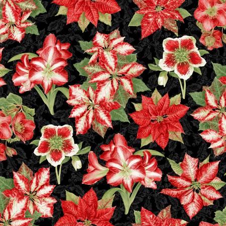 Holiday Botanical Black Amaryllis & Poinsettias