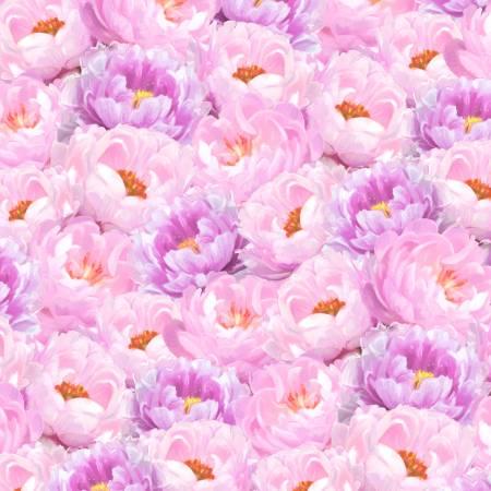 Flower Study Packed Peonies Pink Purple 96458 683