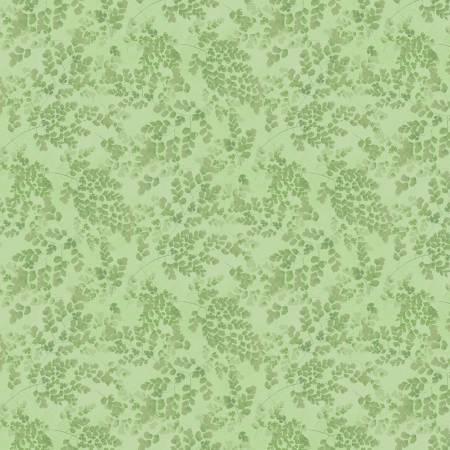 Flower Study Maidenhair Fern Green